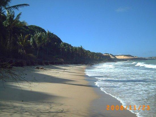 Hotel Village Natureza Dunas Resort:                   stranden