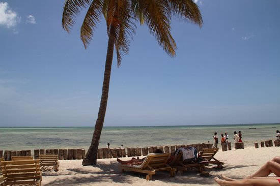 Jumbo Watamu:                   spiaggia e mare