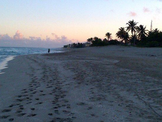 Hotel Club Tropical:                   Playa Hotel