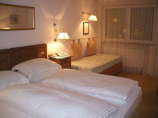 Hotel Garni Aster: Hotel Aster