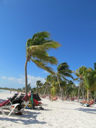 Barcelo Maya Caribe:                   The beach