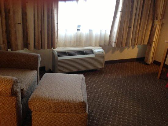 Radisson Hotel-Utica Centre:                                                                         Radiator
