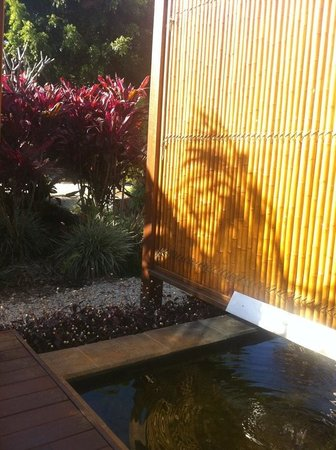 Studio 58 Byron Bay:                   The veranda or my zen garden as I called it