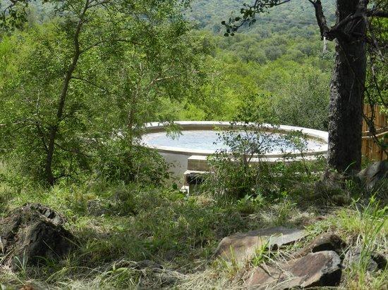 Isilimela Game Lodge: Pool area