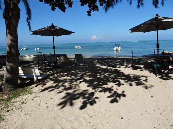Les Lataniers Bleus:                   plage devant résidence