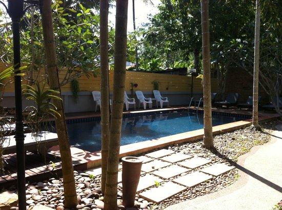 Bangtao Kanita House:                   piscine