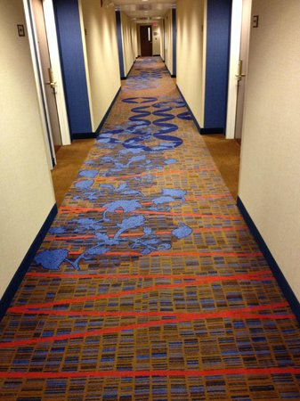 Courtyard Edison Woodbridge: crazy carpet in hallways