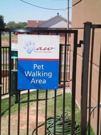 Candlewood Suites Abilene: Pet Friendly Hotel