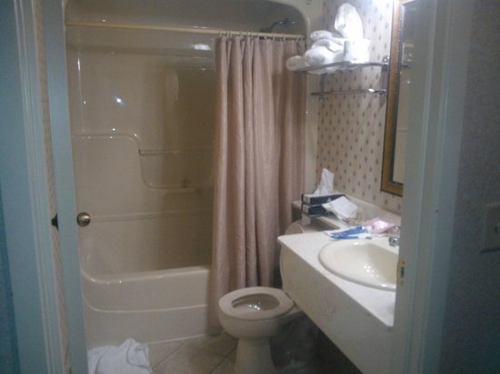 Monte Carlo Inn - Brampton Suites:                   bathroom
