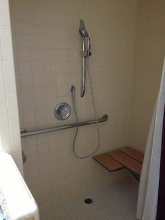 Best Western Plus Raffles Inn & Suites:                   shower, no tub in this room