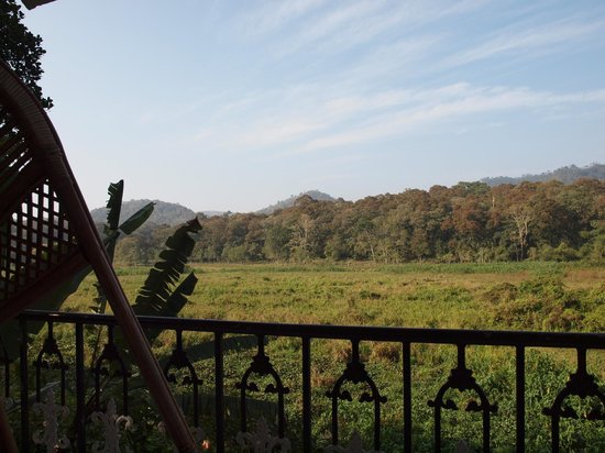 جانغل بالاس هومستاي: view