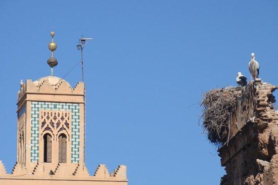 Palais Riad Calipau Marrakech:                   Dans le quartier