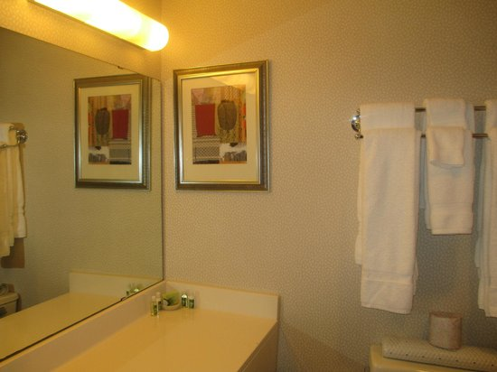 Oak Ridge Hotel and Conference Center: a glimpse of the bathroom