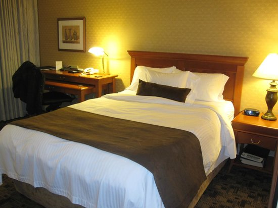 Chelsea Hotel, Toronto:                   Apartamento