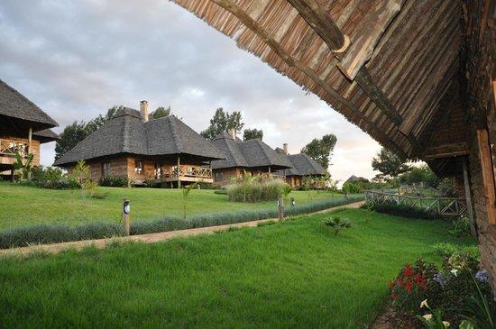 Neptune Ngorongoro Luxury Lodge :                   VUE ARRIERE DU BINGALOW