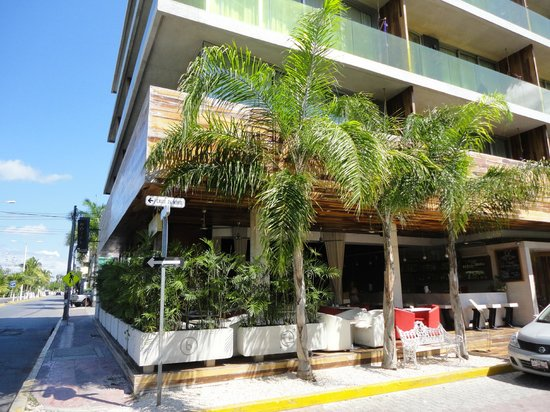 Be Playa Hotel:                   El Hotel