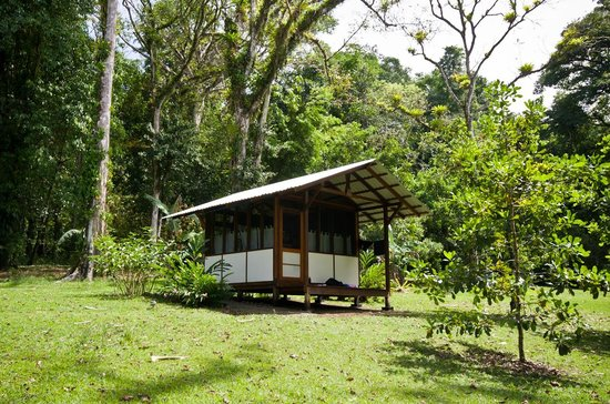 "Saladero Eco Lodge:                   The ""Mariposa"" cabin where we stayed"