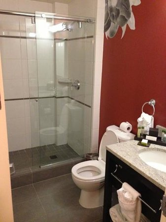 The Emily Morgan Hotel - a DoubleTree by Hilton: Bathroom