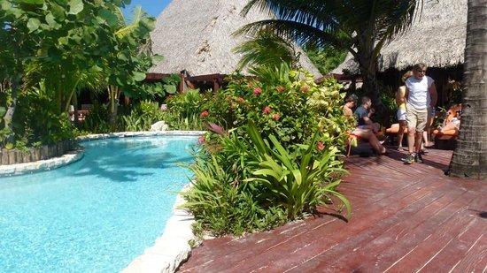 Ramon's Village Resort:                   Pool area