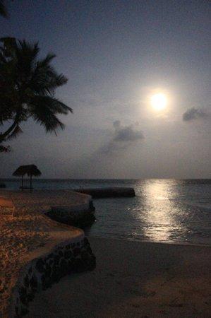 VOI Maayafushi Resort:                   alba di luna