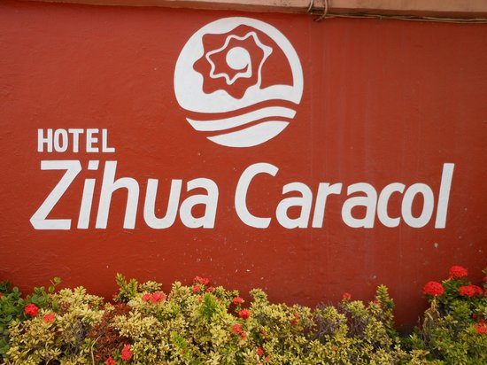Hotel ZihuaCaracol:                   Entry on Calle Adilita