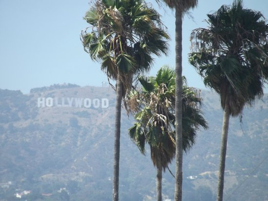 Hollywood Historic Hotel:                   View from our room