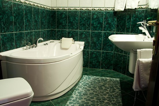 Pensiunea Casa Dunarea: bathroom