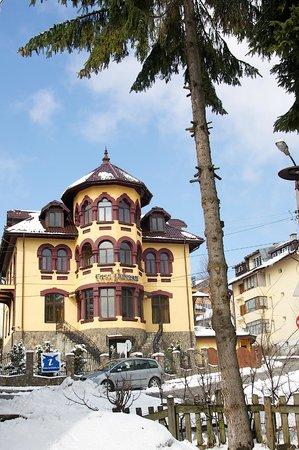Pensiunea Casa Dunarea