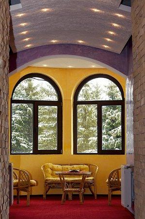 Pensiunea Casa Dunarea: living