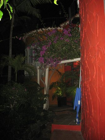 Pasion Tropical:                   Cool evenings