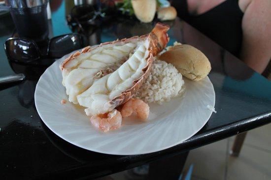 Delfinario en Cayo Santa Maria :                                     lobster lunch wow
