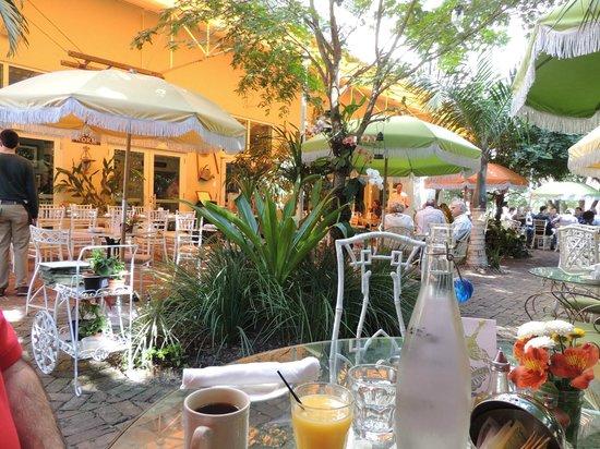 outdoor dining at peacock garden cafe picture of peacock garden bistro miami tripadvisor