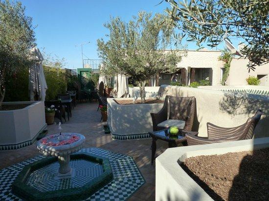 Riad Idra:                   Dachterrasse
