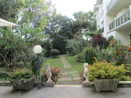Quintinha São João:                                     Hotel garden, Quintinha Sao Jao, 19 January 13