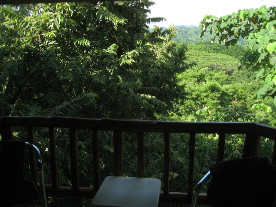 Lodge Las Ranas: View of the rainforest from our balcony