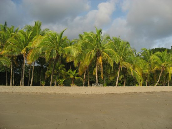 Lodge Las Ranas: Playa Carillo - gorgeous beach next to Playa Samara