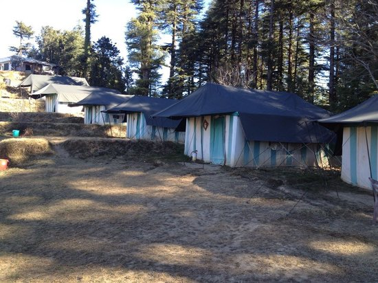 Camp Wildex, Kanatal:                   Swiss tents accommodation at the camp