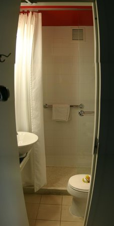 Hotel Indigo Atlanta:                                     Bathroom and shower