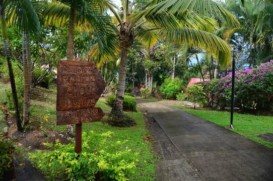 Ti Kaye Resort & Spa:                   Hotel grounds