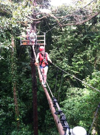 Red Frog Beach Island Resort & Spa:                   Zipline