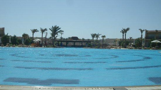 Hilton Sharks Bay Resort:                   Lovely pool area