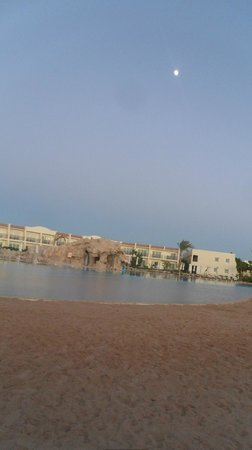 Hilton Sharks Bay Resort:                   Pool area