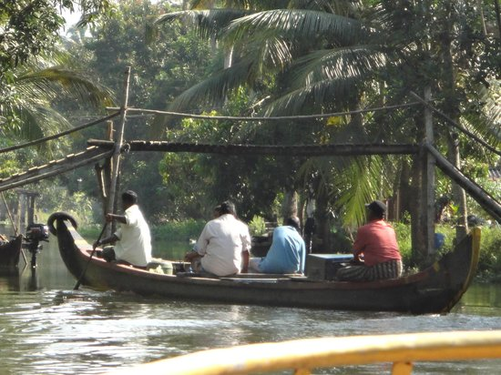 Motty's Homestay: Backwater Scene From Boat Trip