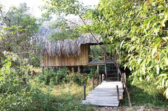 Freedomland Phu Quoc Resort:                   Tangerine