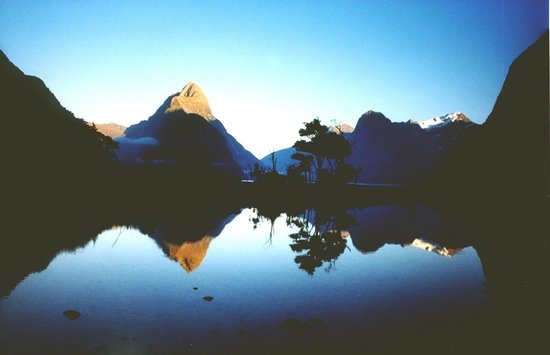 Arran Motel: Spectacular Milford Sound