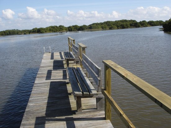 Natures Landing Condominium: Private Fishing Dock and great place to birdwatch