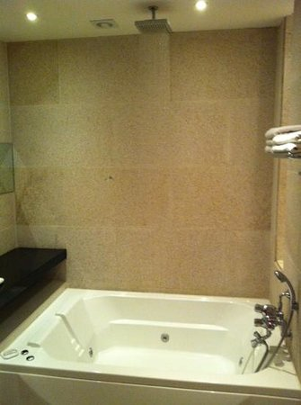 Hotel Amare:                   love the shower and tub!