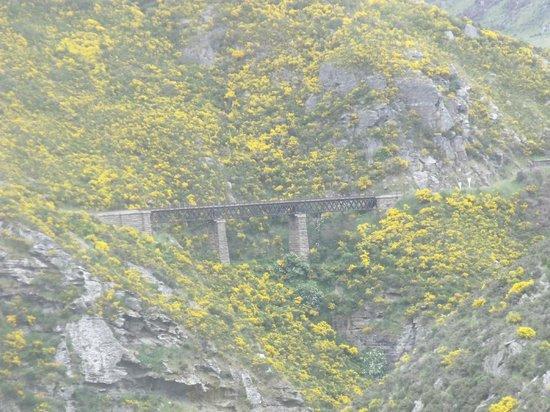 Taieri Gorge Railway: Taieri Gorge