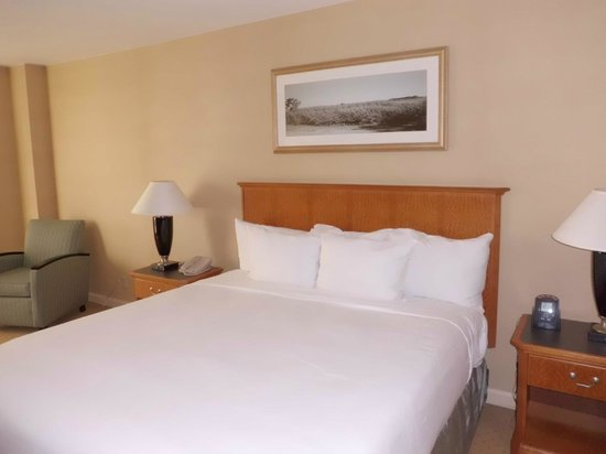 Hilton Newark Airport: Bed