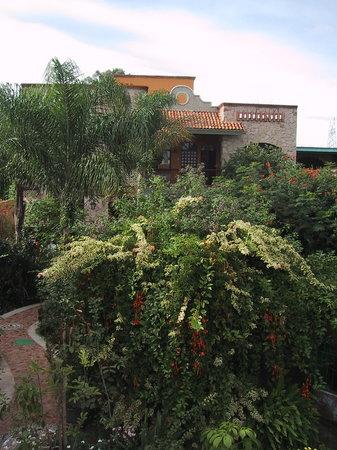 Casa de Las Flores: Jardin